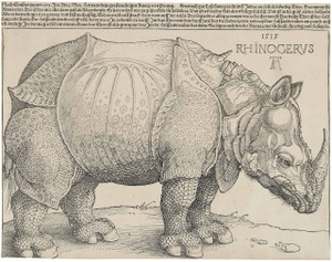 Drers_rhinoceros_1515